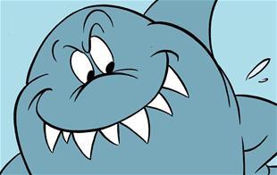 Mød en haj på nært hold!