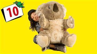 Vind Althans koalabjørn!