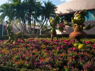 Kom i forårshumør med disse blomsterbilleder!