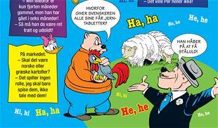 Hvorfor giver svenskeren alle sine får jerntabletter?