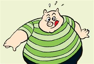 Hvad sker hvis du slås mod en gris?
