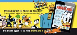 Hvordan går det for Anders og hans kræsne kat?